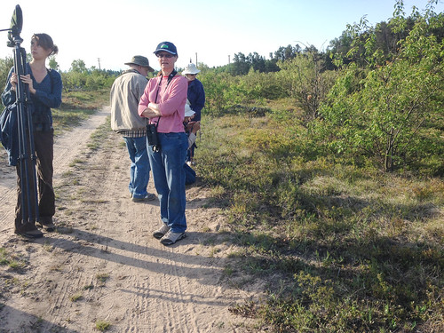 Kirtland's Warbler trip 2013--our expert leader at far left, and people photographing a Vesper Sparrow nest on the ground just to the right.
