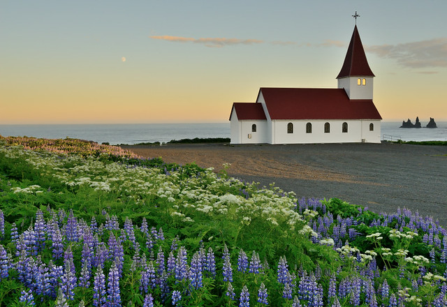 lupine church sea stacks flickr photo sharing. Black Bedroom Furniture Sets. Home Design Ideas