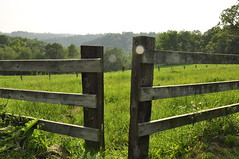 outdoor structure(0.0), home fencing(0.0), fence(1.0), split rail fence(1.0), pasture(1.0),