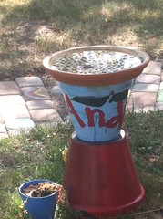 flowerpot, lawn,