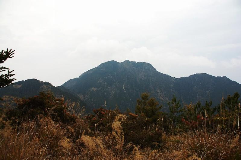 新康山(From 連理山)