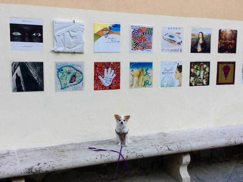 Montalcino Consorzio del Vino Brunello tiles with my Chihuahua Venus
