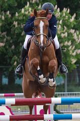 Royal Windsor Horse Show 2015
