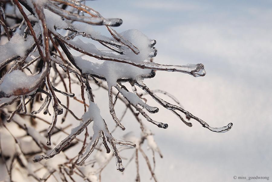 Winter 20