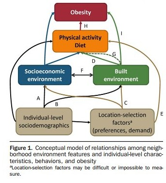 Diagram on factors impacting obesity