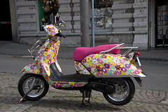 Spring on two wheels