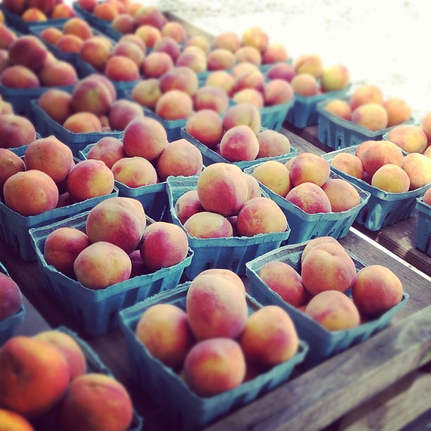 First peaches of the season
