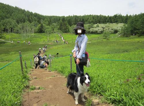 入笠湿原のランディとCharan 2012年6月23日 by Poran111