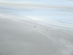 People walking near Mount Saint Michel