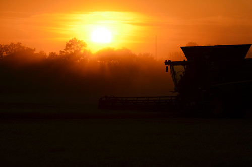 I love sunset harvest photos