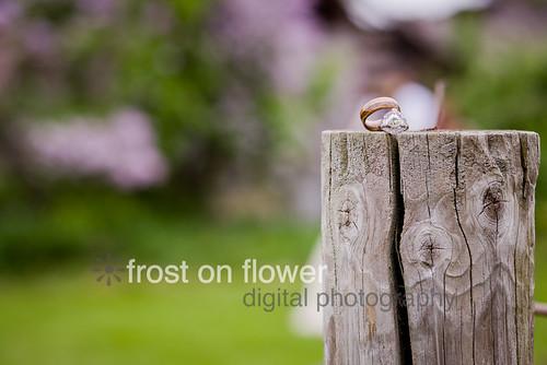 20130601-weddingHR-1636