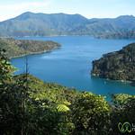 Queen Charlotte Sound Views - New Zealand