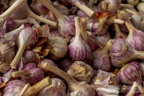 2013-09-07 Vancouver West End Farmer's Market Garlic-1