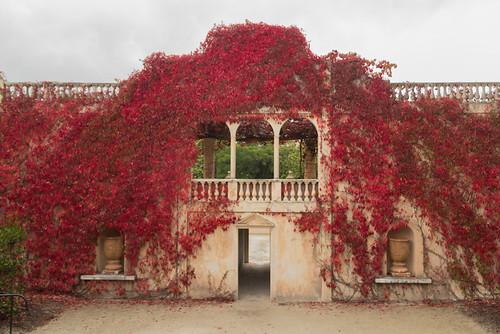 Hamilton Gardens - Italian Renaissance Garden