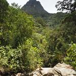 Do, 14.05.15 - 12:31 - Valle de Cocora