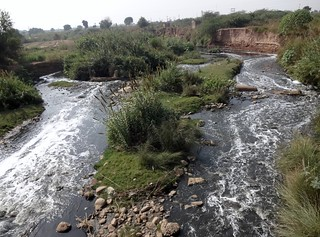 Industrial waste in one of the streams of Punjab.