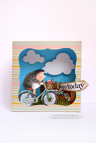 Hedgie shadow box