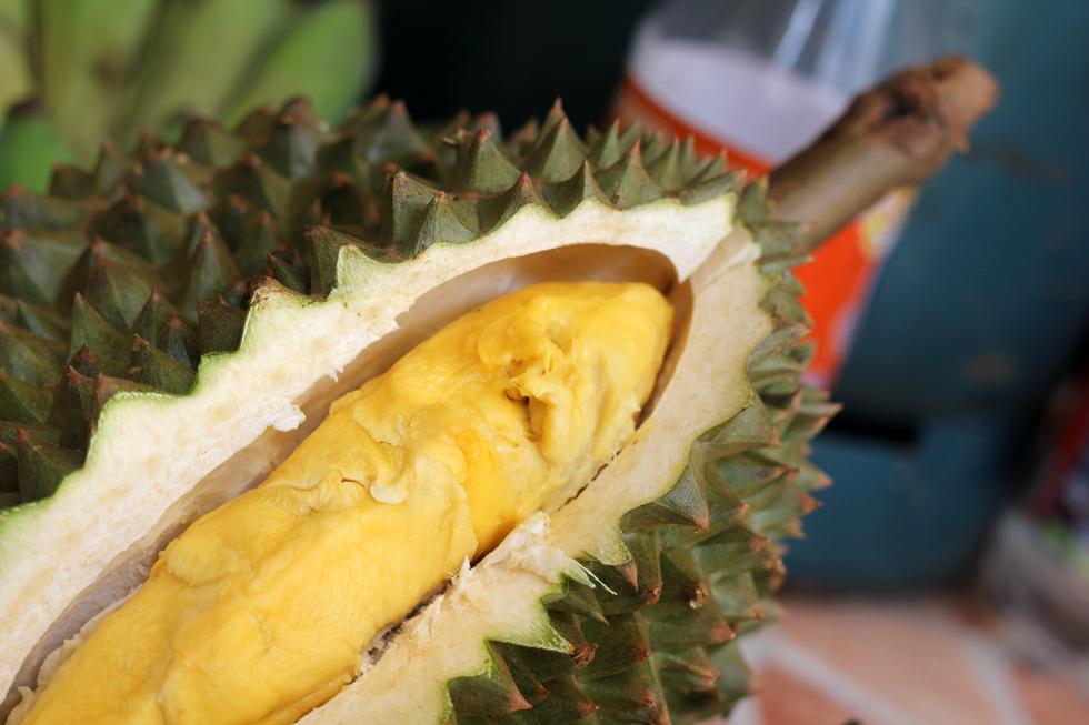 Chani Durian