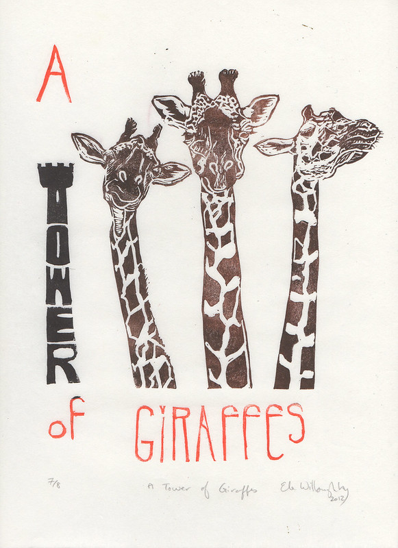 giraffes001