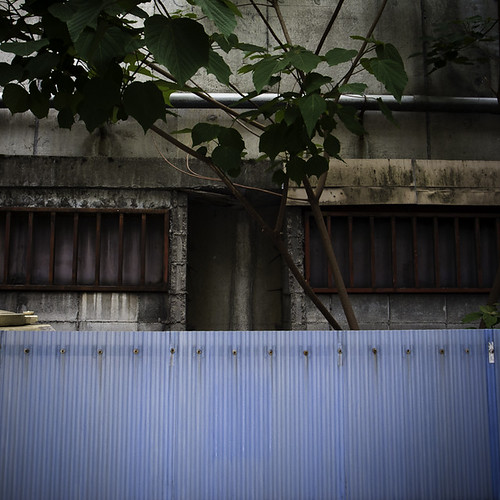 Looking at Okachimachi with Corrugated Wall and Tree