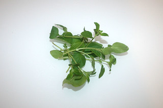 06 - Zutat Oregano / Ingredient oregano