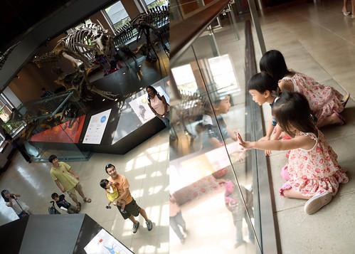 museum33