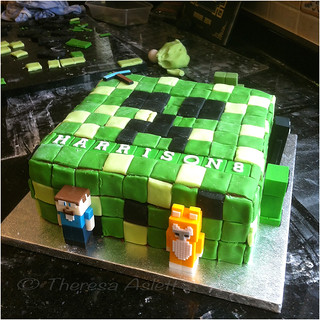 Minecraft Rules!