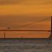 Golden Gate distortions