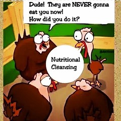 Don't be a Turkey, it's time you learn about #ISAGENIX :muscle:  #HappyThanksgivingDay2016 #NutritionalCleansing #DWHealthCoach