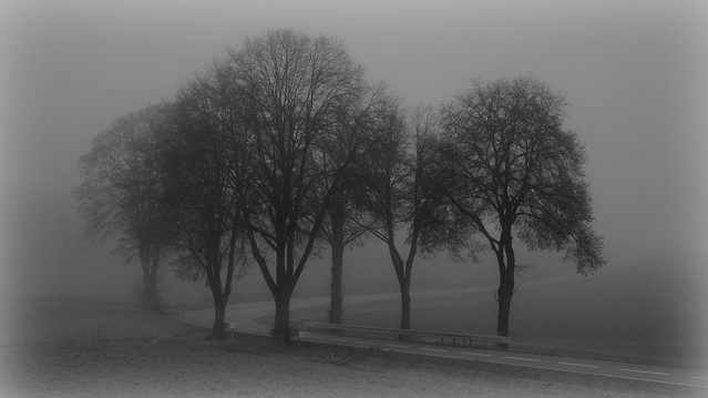 Nordhessen im Nebel, Canon EOS 760D, Tamron 16-300mm f/3.5-6.3 Di II VC PZD Macro