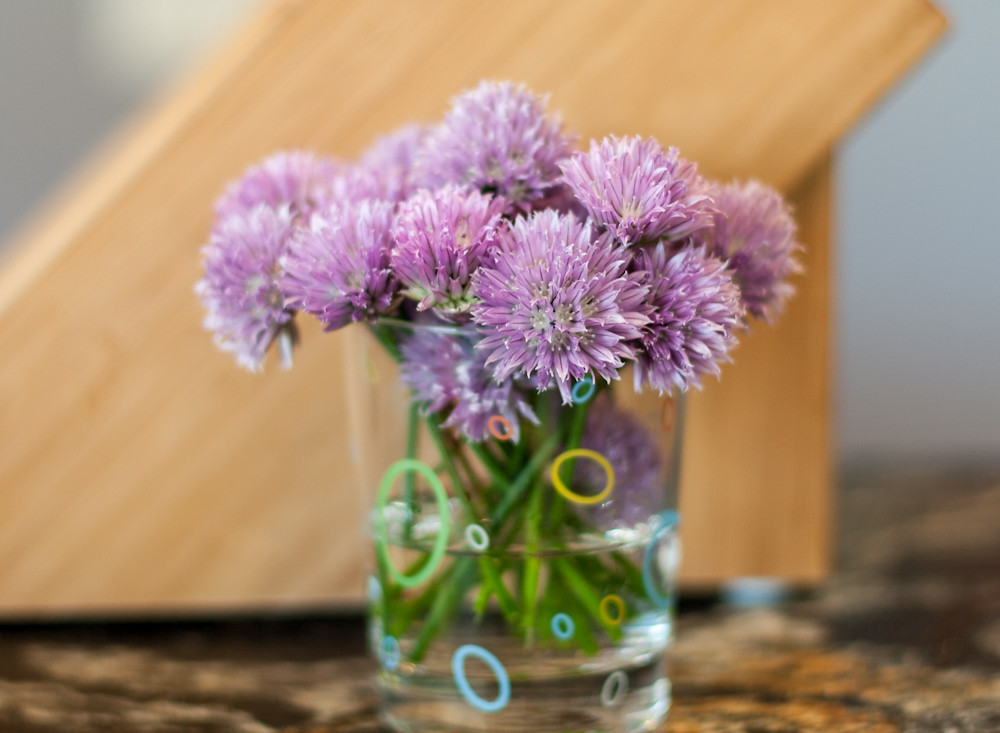 Chive blossoms fresh from the garden