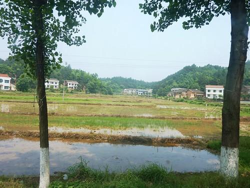 C-Hunan-Route Changsha-Hengshan (7)