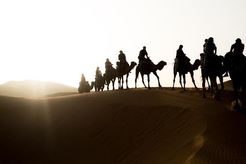 無料写真素材, 自然風景, 砂漠, ラクダ, サハラ砂漠, 人物  動物