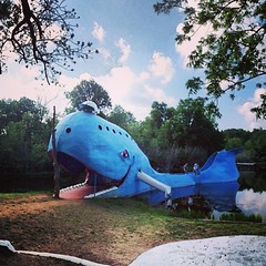 The blue whale of Catoosa, a #route66 icon from the later years. This guy was built as part of a theme park in the 1970s. He has slides for fins and a diving platform on the tail. Though the photos make it look like there used to be (non-native) alligator
