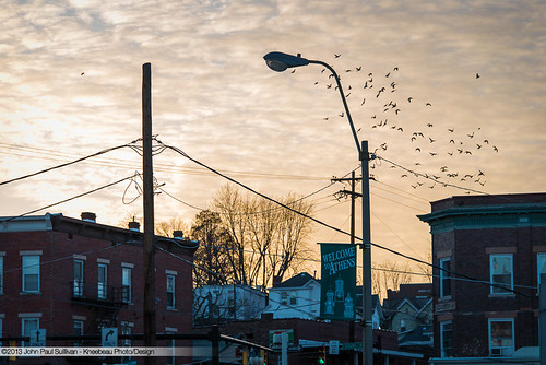 45701 architecture athens birds birdsflying bricks collegetown country courtstreet d800 dslr downtown johnpsullivan johnpaulsullivan johnsullivan kneebeau landscape nikon ohio ohiouniversity powerlines rural statestreet street streetlight streets uptown unitedstates usa