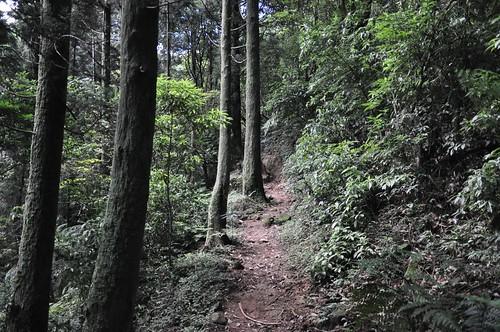 磺嘴山生態保護區