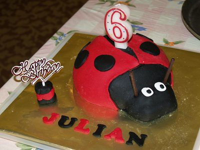 20130528_julianladybird