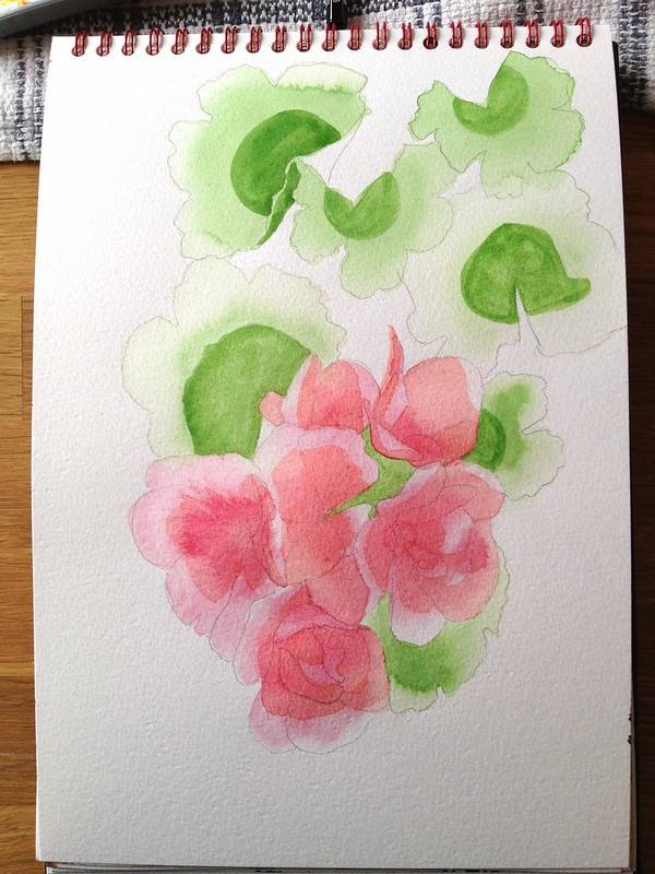 Day 3 - watercolour of geraniums (first layer)