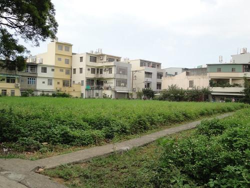 住家附近的農田已變成一棟棟的樓房