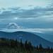 Mount Adams Panorama