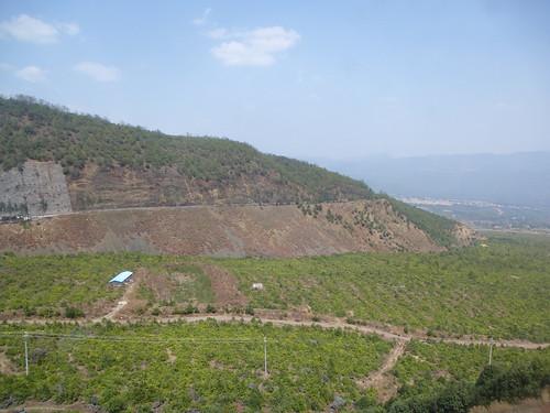 Yunnan13-Dali-Lijiang-Route (106)
