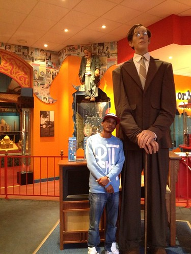 dla-tallest-man