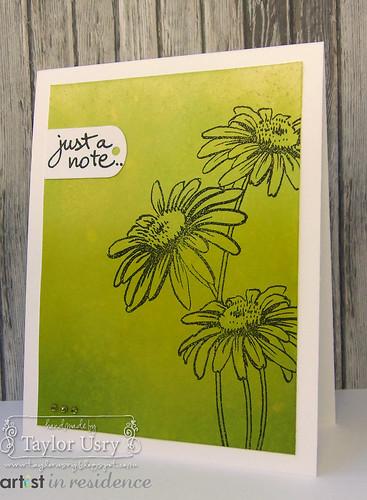 Green Daisies 2
