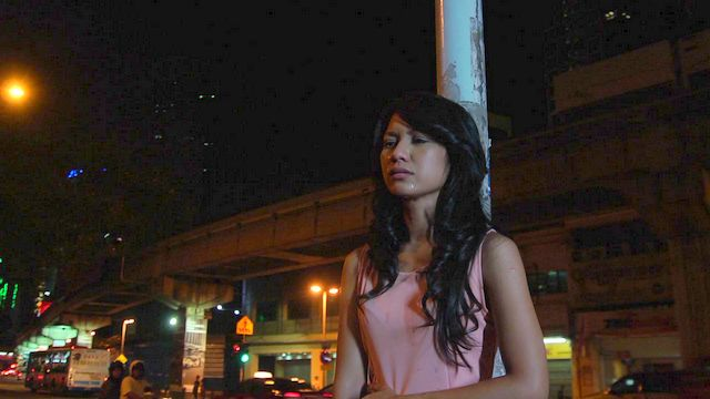 Sinopsis Drama Bersiri Puteri Malam