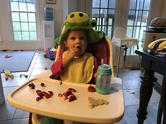 Madeleine insists on wearing the green pig robe at her snack today