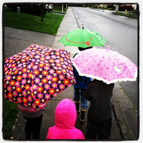 A rainy day walk.