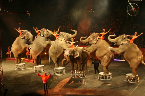 "Ringling Bros. and Barnum & Bailey :  ""Fully Charged"""