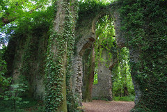 Ruins of the church of St Mary, East Somerton