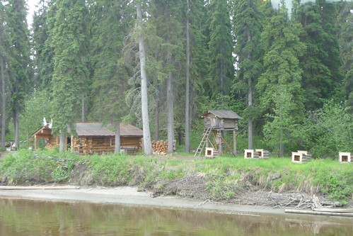 Musher's cabin, with sled dog houses and cache
