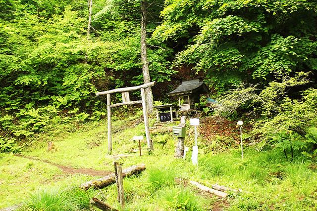 滝子山_29